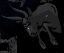 Künstlerische Gestaltung des Sternbildes (aus Stellarium)
