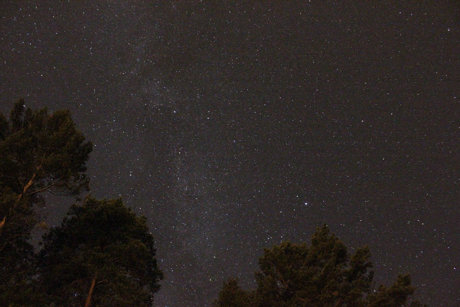 milchstrasse-zwischen-bc3a4umen-2 Faszinierend Schlechtes Sehen Bei Nacht Dekorationen