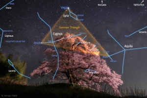 SummerTriangles_Takei_1000_annotated