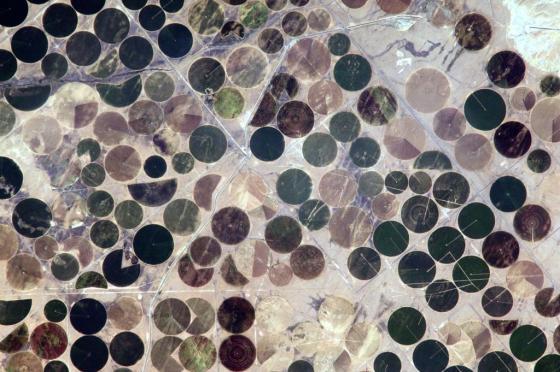 Bewässerung in der Wüste @Astro_Alex [https://twitter.com/Astro_Alex/media]